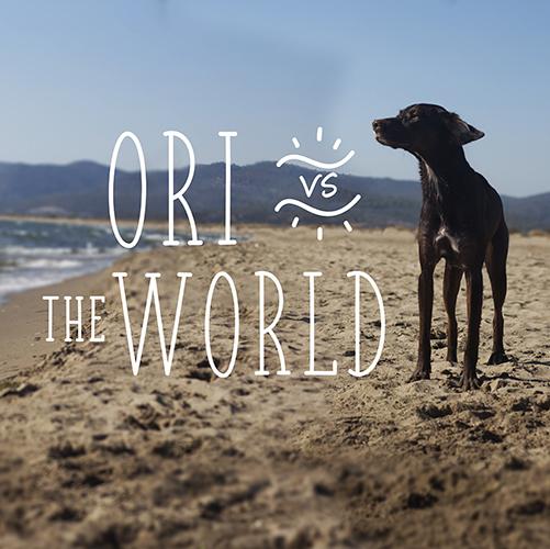 Ori vs the world